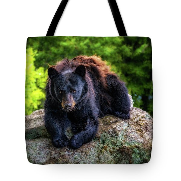 Grandfather Mountain Black Bear Tote Bag