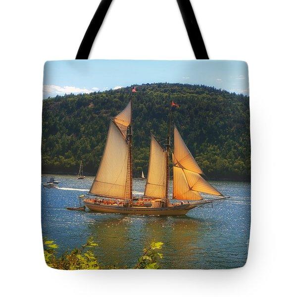 Grandiose  Tote Bag by Elizabeth Dow