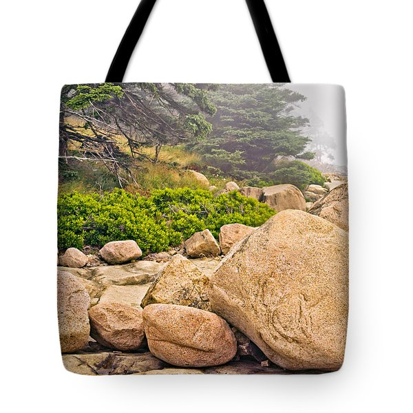 Granite Boulders Acadia Tote Bag