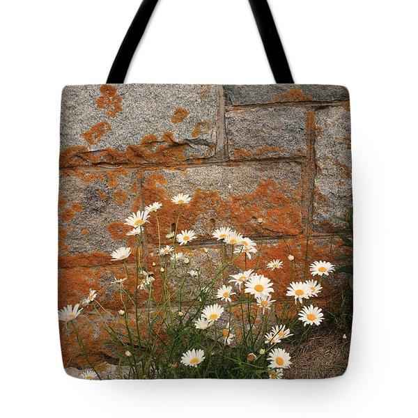 Granite Daisies Tote Bag