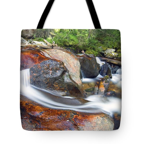 Granite Falls Tote Bag by Gary Lengyel