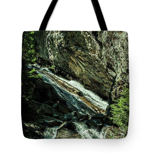 Granite Falls Of Ancient Cedars Tote Bag