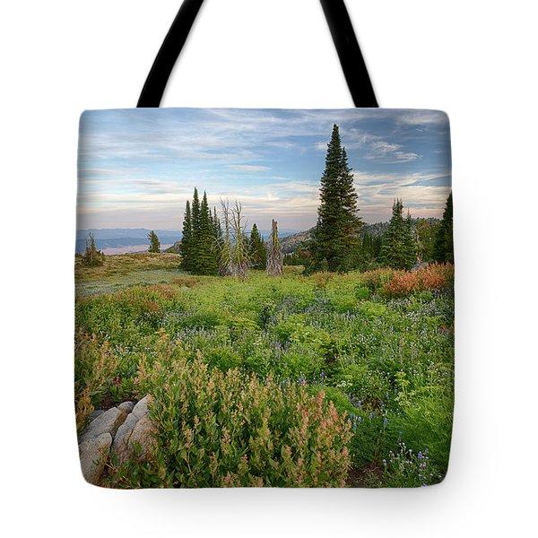 Granite Mountain View Tote Bag