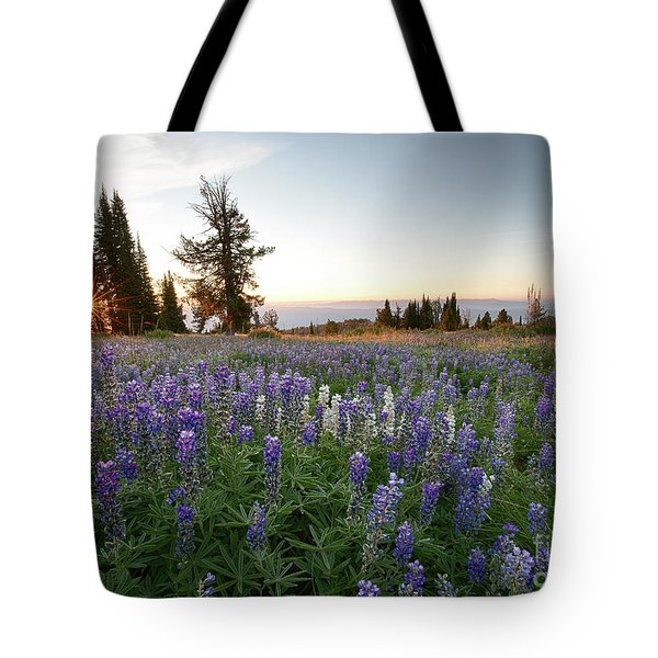Granite Mountains Sunrise Tote Bag by Idaho Scenic Images Linda Lantzy