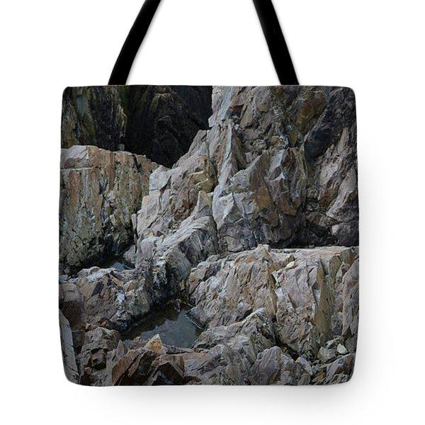 Granite Shore Tote Bag