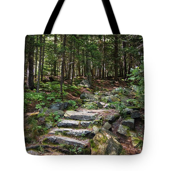 Tote Bag featuring the photograph Granite Steps, Camden Hills State Park, Camden, Maine -43933 by John Bald