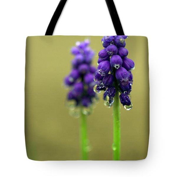 Grape Hyacinth Tote Bag by Joseph Skompski
