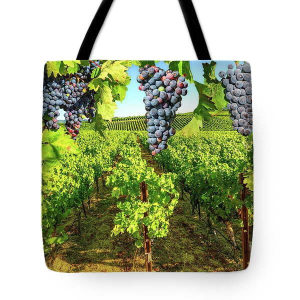 Tote Bag featuring the photograph Grape Plantation Napa Valley by Benny Marty