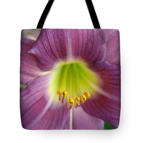 Grape Purple Daylilies  Tote Bag by Rebecca Overton