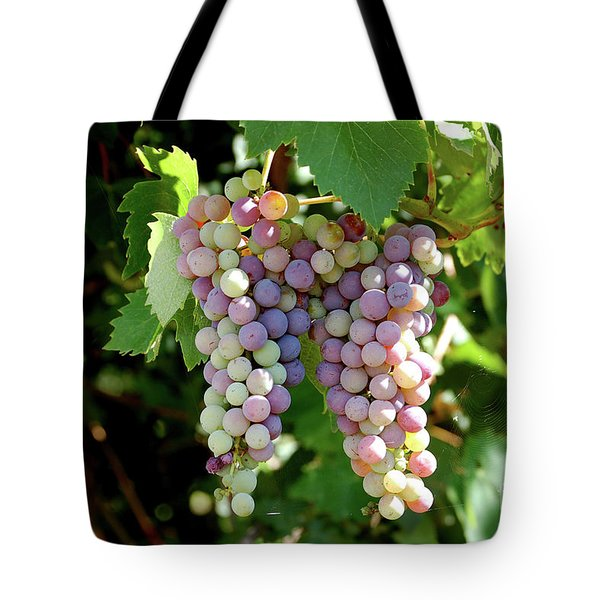 Tote Bag featuring the photograph Grapes In Color  by Frank Stallone