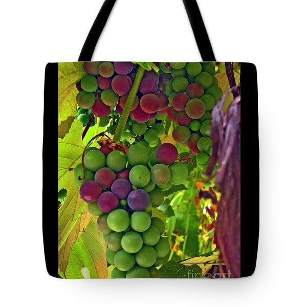 Tote Bag featuring the photograph Grapes On The Vine by Chris Anderson