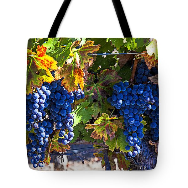 Grapes Ready For Harvest Tote Bag by Garry Gay