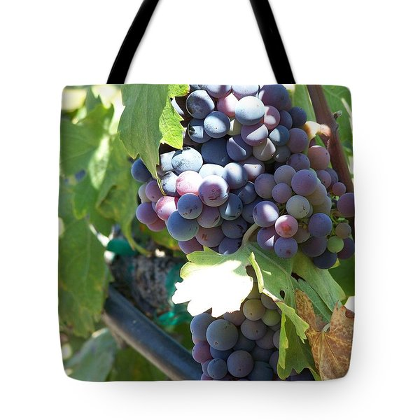 Grapevine Tote Bag by Pamela Walrath
