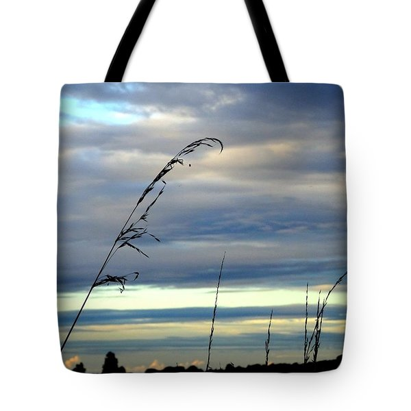 Grass Against Abstract Sky Tote Bag