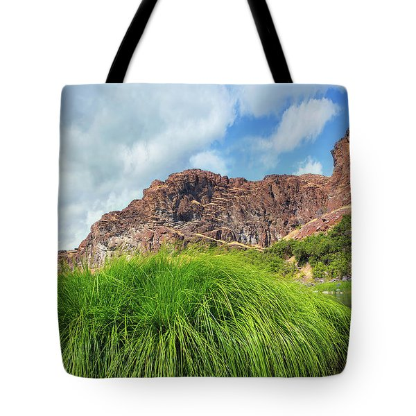 Grass Along John Day River In Central Oregon Tote Bag
