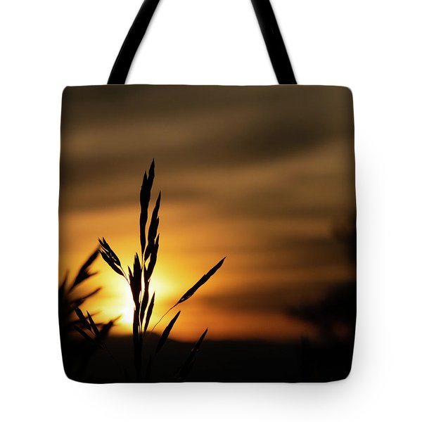 Grass At Sunset Tote Bag