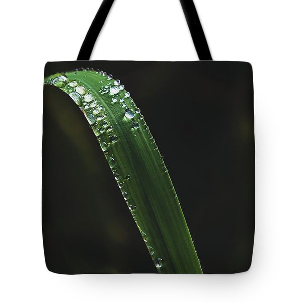 Grass Tote Bag