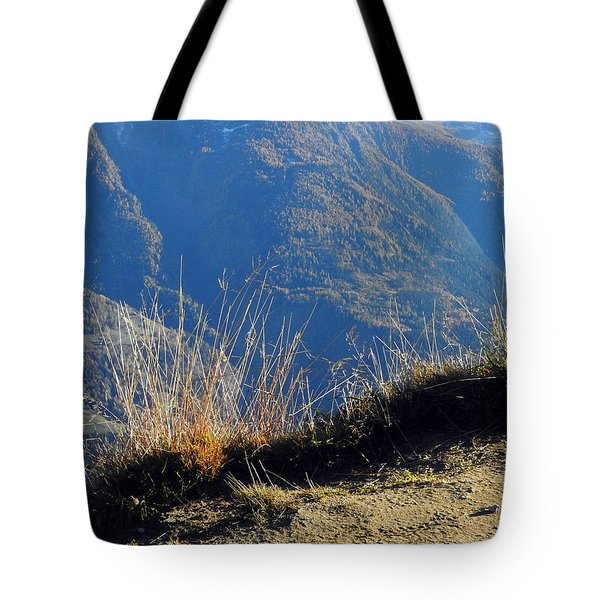 Grass In The Foreground, The Main Valley Of The Swiss Canton Of Valais In The Background Tote Bag