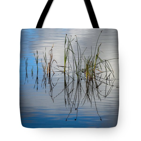 Grass Reflections In The Lake Tote Bag