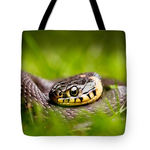 Grass Snake - Natrix Natrix Tote Bag