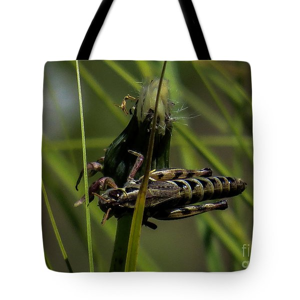 Grasshopper 2 Tote Bag
