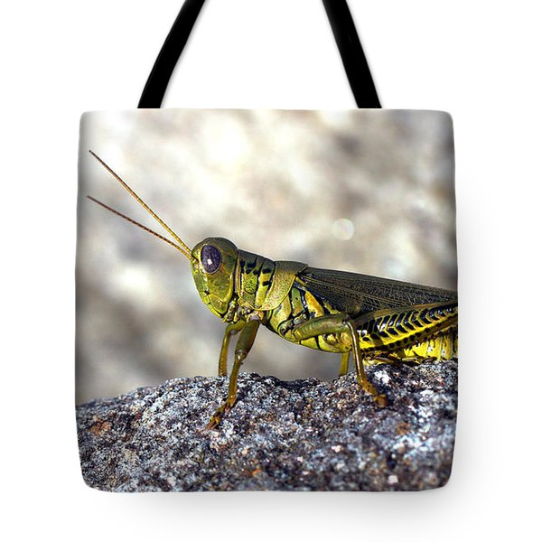 Grasshopper Tote Bag by Joseph Skompski