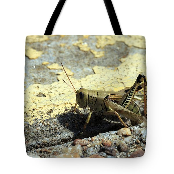 Grasshopper Laying Eggs Tote Bag