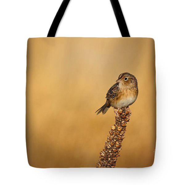 Grasshopper Sparrow - Fresh Fall Tote Bag