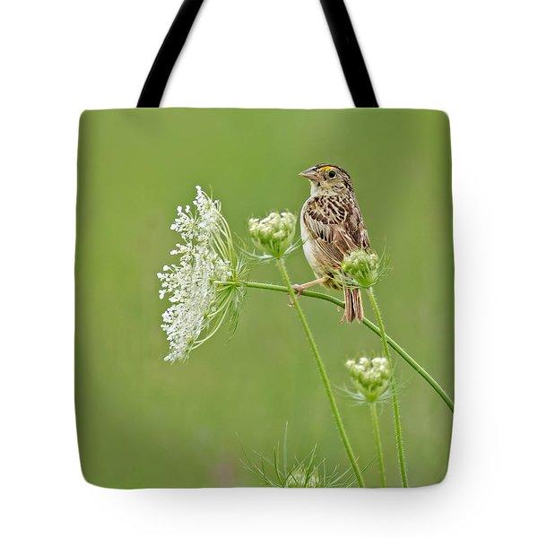 Grasshopper Sparrow Tote Bag