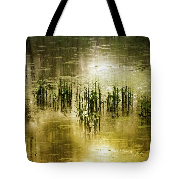 Tote Bag featuring the photograph Grassland Abstract by Jessica Jenney