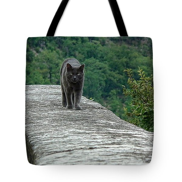 Gray Cat Prowling Tote Bag