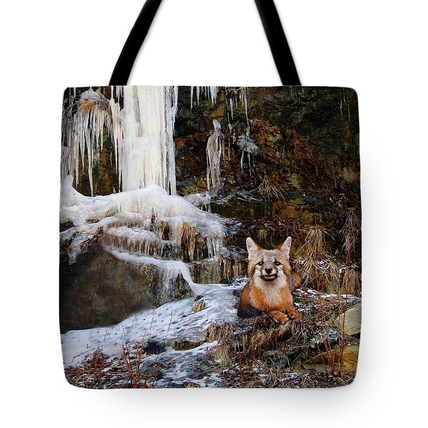 Gray Fox And Icescape Tote Bag