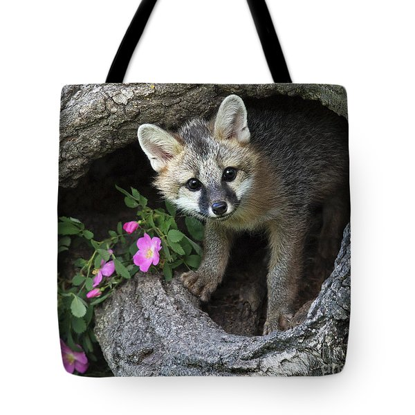 Gray Fox Kit Tote Bag