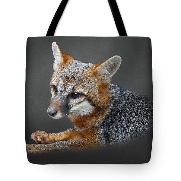 Gray Fox Portrait Tote Bag