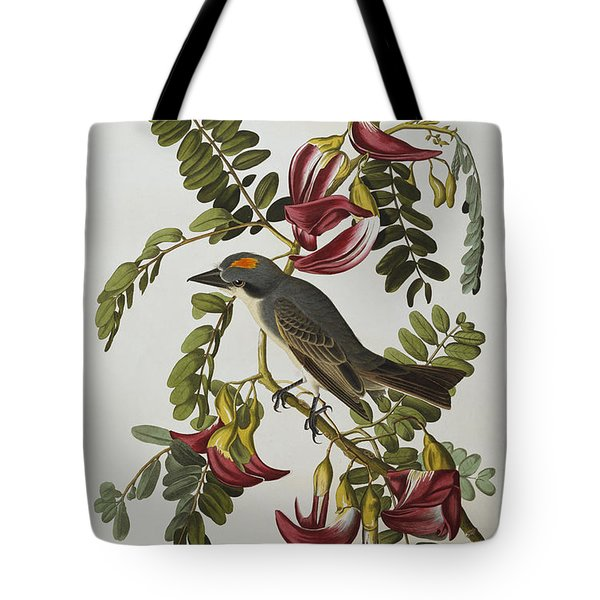 Gray Tyrant Tote Bag by John James Audubon