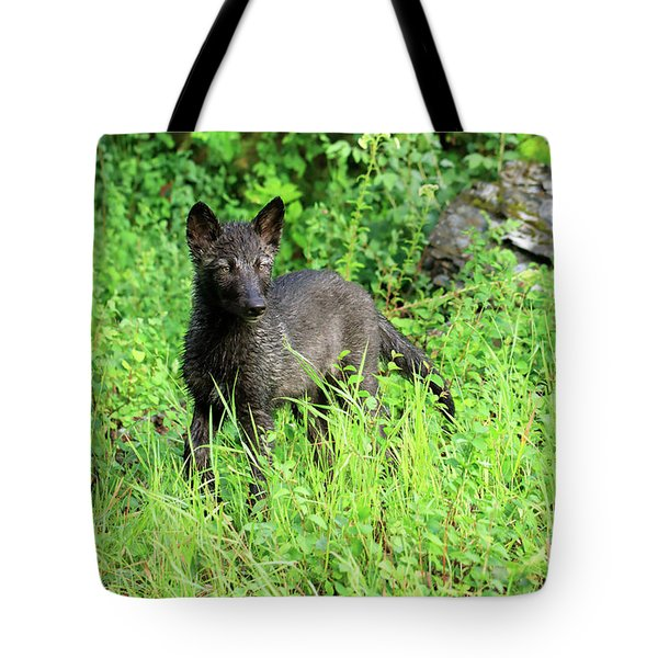 Gray Wolf Pup Tote Bag by Louise Heusinkveld