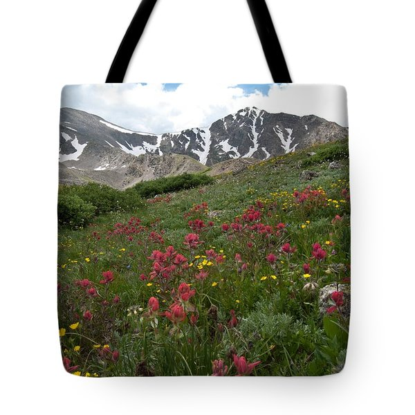 Gray's And Torreys Tote Bag