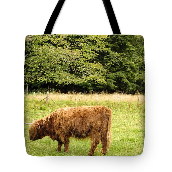 Tote Bag featuring the photograph Grazing by Christi Kraft