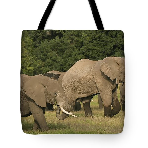 Grazing Elephants Tote Bag by Gary Hall