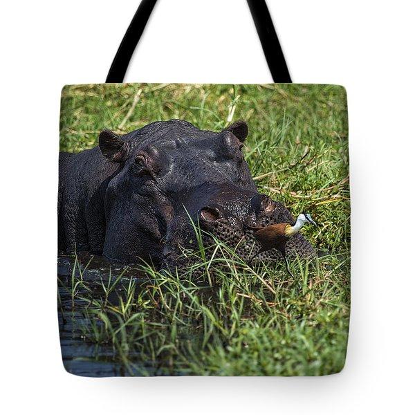 The Hippo And The Jacana Bird Tote Bag