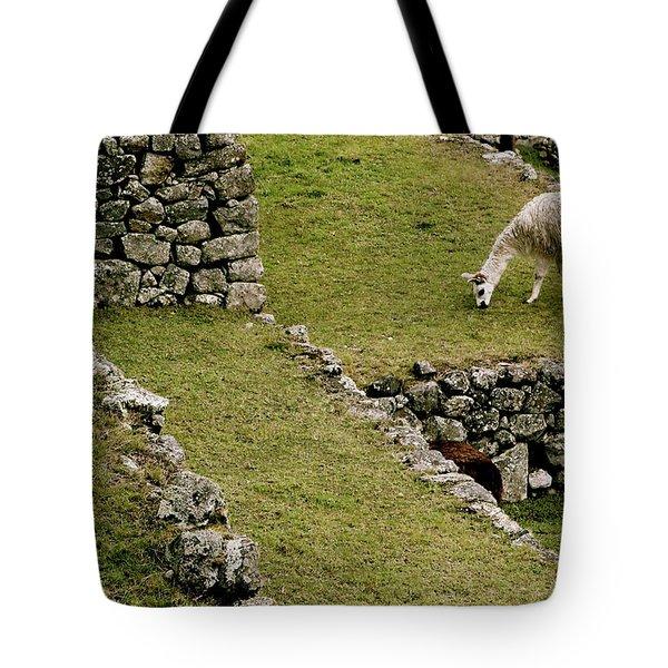 Grazing In Machu Picchu Tote Bag