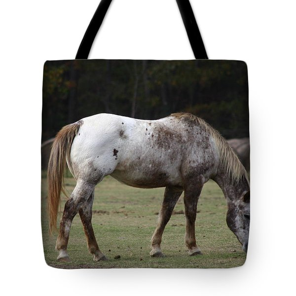Tote Bag featuring the photograph Grazing Time by Kim Henderson