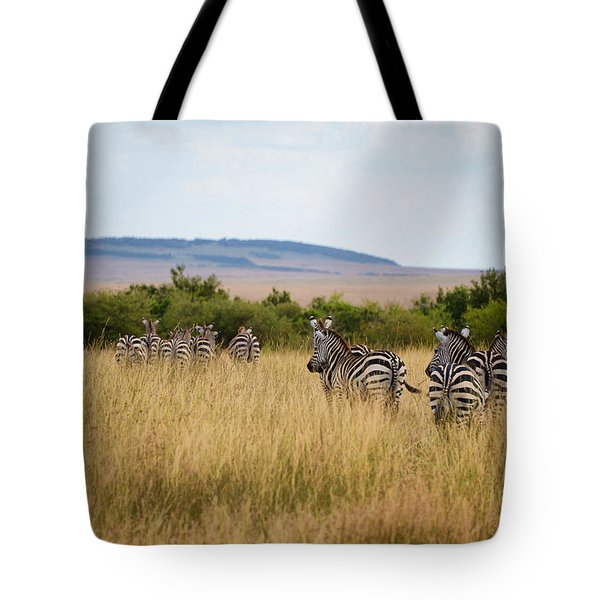 Grazing Zebras Tote Bag