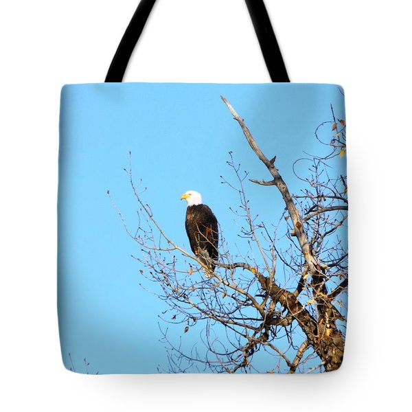 Great American Bald Eagle Tote Bag