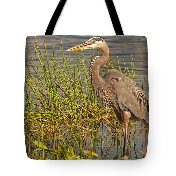 Tote Bag featuring the photograph Great Blue At The Park by Don Durfee