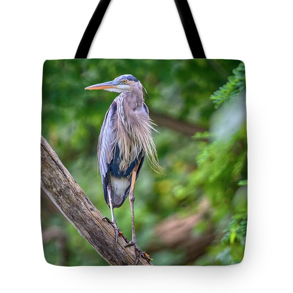 Great Blue Heron 2 Tote Bag by Gary Hall