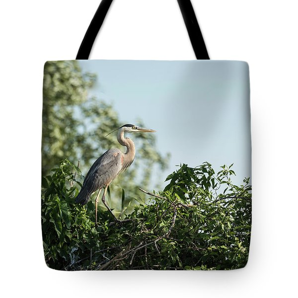 Tote Bag featuring the photograph Great Blue Heron  2015-18 by Thomas Young
