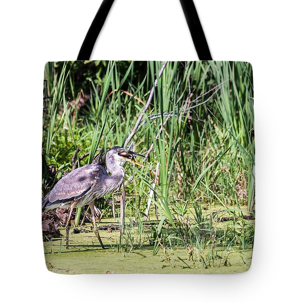 Tote Bag featuring the photograph Great Blue Heron And Blue Gill by Edward Peterson