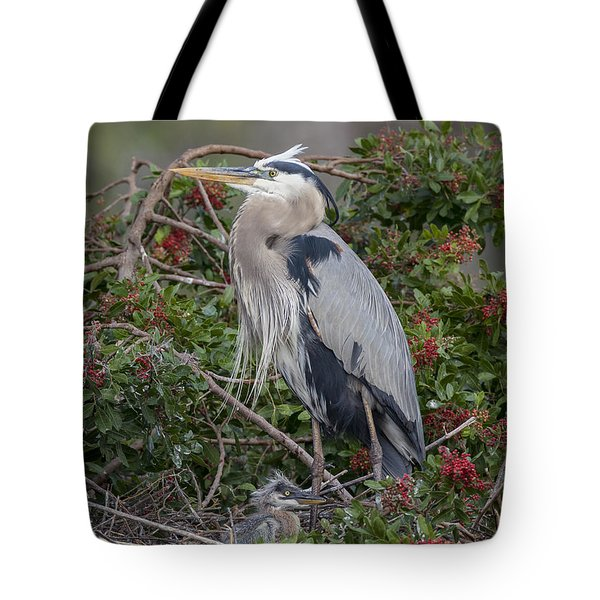 Great Blue Heron And Nestling Tote Bag