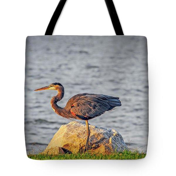 Great Blue Heron At Sunset Tote Bag